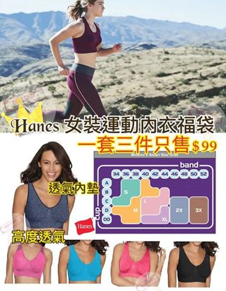 圖片 Hanes 1套3件女裝運動內衣 (顏色隨機)