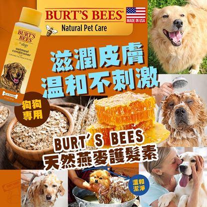 圖片 A P4U : 4底: Burt's Bees 狗狗天然燕麥護髮素