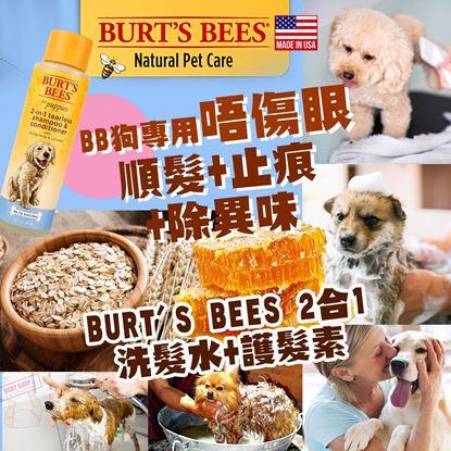 圖片 A P4U 6底:  Burt's Bees 狗狗2合一洗髮水+護髮素