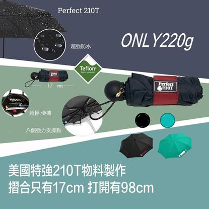 圖片 Perfect 210T Mini Umbrella