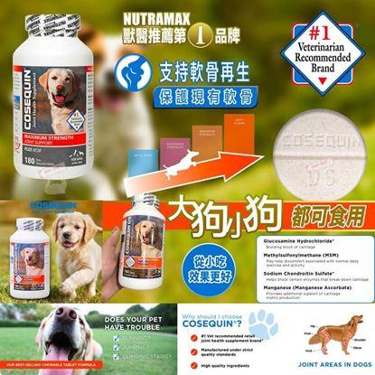 圖片 *貨品已截單* A P4U 2底: NUTRAMAX  COSEQUIN DS 狗狗關節營養保健品 180粒