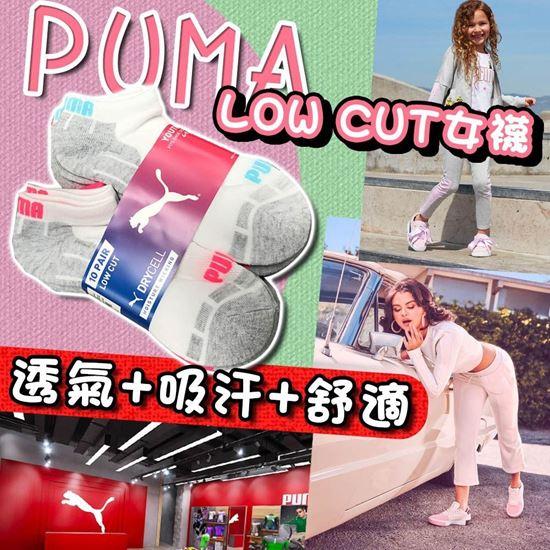 圖片 A P4U 1中: Puma Low Cut 中童襪 (一套十對) Size: 4-9.5