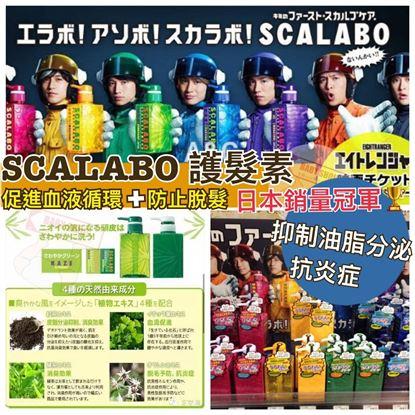 圖片 Scalabo 綠瓶KAZE護髮素 (1套5支)