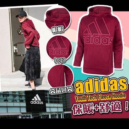 圖片 **貨品已截單**A P4U 3底: Adidas Tech Fleece 中童有帽衛衣