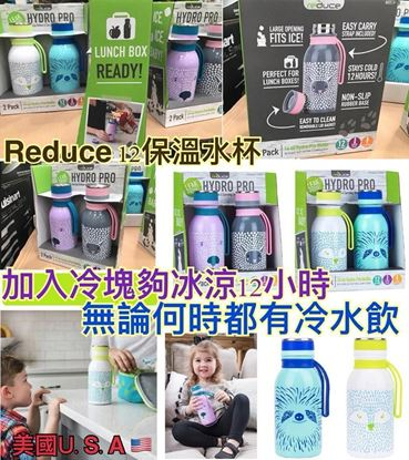 Picture of Reduce 直立式水樽 (1套2個) 紫+灰色