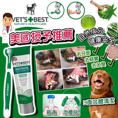 圖片 A P4U 3底: Vet's Best 狗狗牙膏套裝 3.5oz