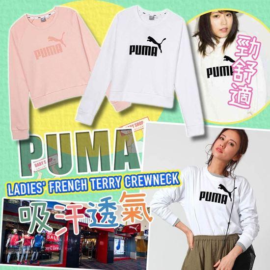 圖片 Puma LOGO 女裝衛衣