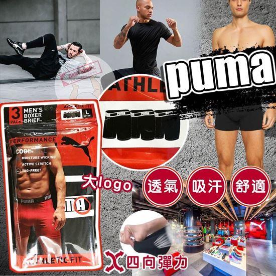 圖片 *貨品已截單* A P4U 7底: Puma 1套3條大Logo 運動底褲