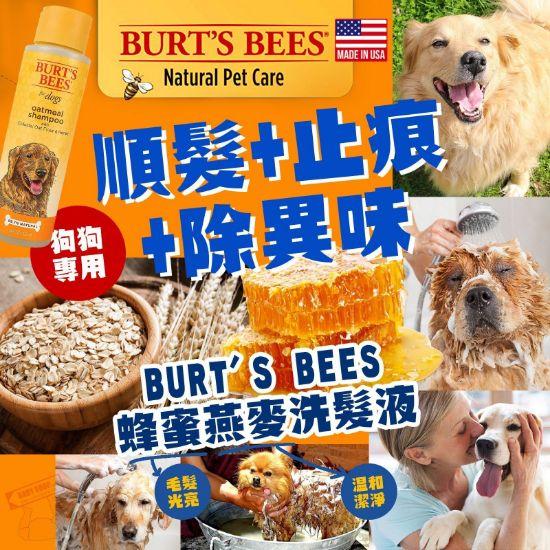 圖片 *貨品已截單*A P4U 11 底:Burt's bees  for Dogs 燕麥蜂蜜洗髮液